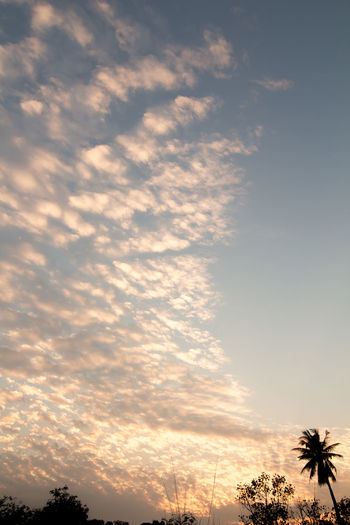 Blue Cloud - Sky Clouds Evening Sky Everning Sky Shadow Sky Sunset