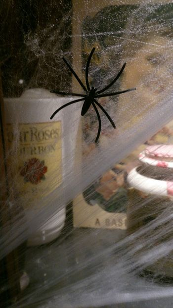Una Tela De Araña con su Araña no puede faltar en una Noche De Halloween