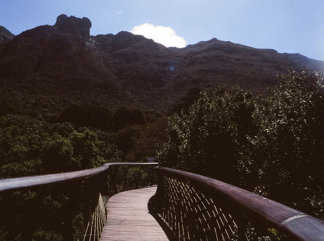 Architecture Beauty In Nature Bridge Bridge - Man Made Structure Built Structure Connection Day Direction Footbridge Mountain Mountain Range Nature No People Outdoors Plant Railing Scenics - Nature Sky The Way Forward Tranquil Scene Tranquility Tree Water