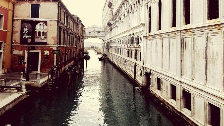 Venice 💕