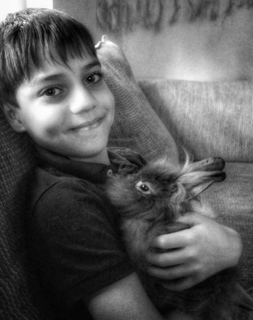 Close-Up Of Boy With Rabbit Sitting On Sofa At Home