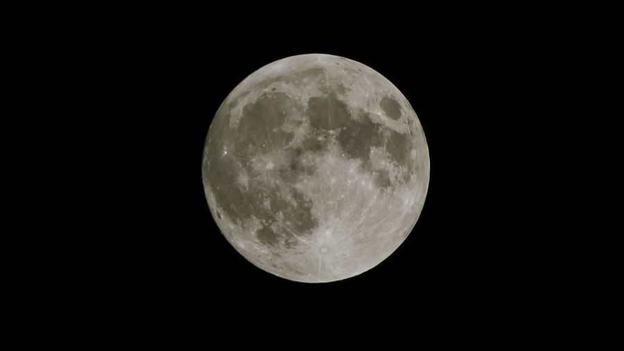 The moon 6 hrs before the Lunar Eclipse 1-31-18 BlueMooon2018 Nikond750 Tamrom600mm Tamromusa Astronomy Beauty In Nature Clear Sky Close-up Full Moon Majestic Moon Moon Surface Nature Night Nikonphotography No People Outdoors Planetary Moon Scenics Sky Space Space Exploration Tamron Lens Tranquil Scene Tranquility