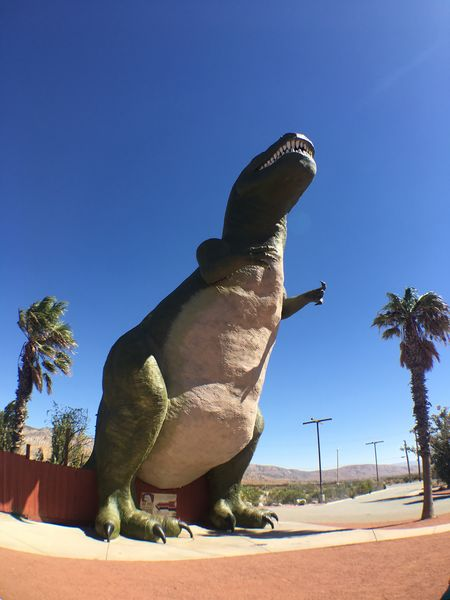 Statue Animal Themes Day Blue Sculpture Outdoors Clear Sky One Animal Animals In The Wild Dinosaur Cabazon Dinosaurs Tyrannosaurus Desert Mojave Desert California Roadside America Road Trip Wide Angle Palm Tree Palms No People Perching Nature Sky Close-up