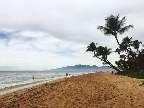 Maui Sand Photography Mauiphotography