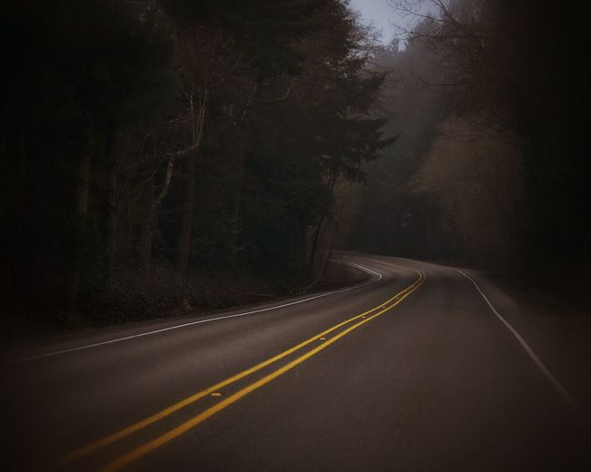Road Passing Through Forest At Night