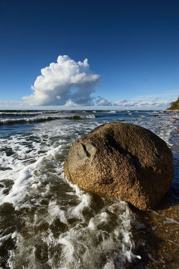 Scenic view of sea shore against sky