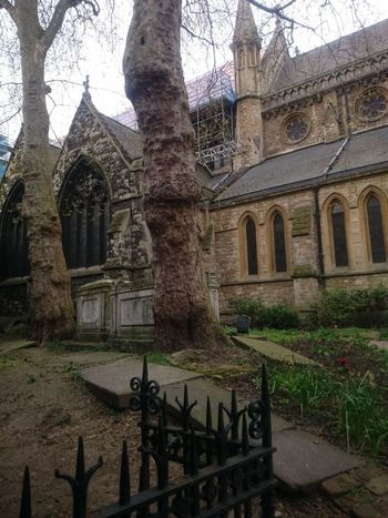 Abbey Architecture Belief Building Building Exterior Built Structure Courtyard  Day History Nature No People Old Outdoors Place Of Worship Plant Religion Spirituality The Past Tree Tree Trunk Trunk
