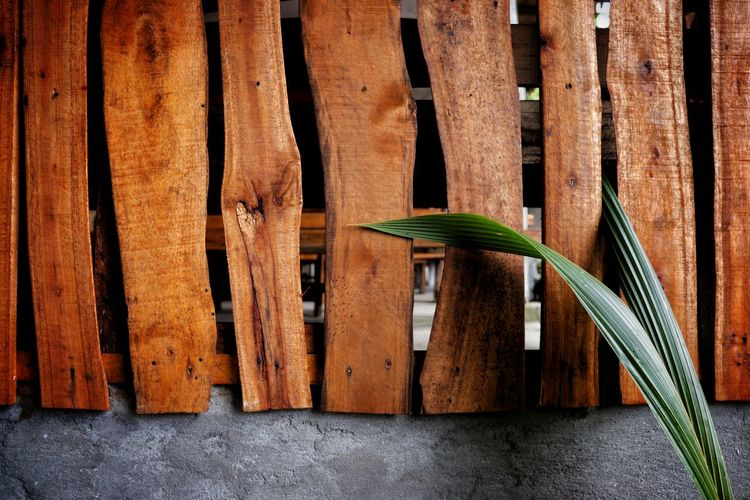Close-up of wooden fence against wall