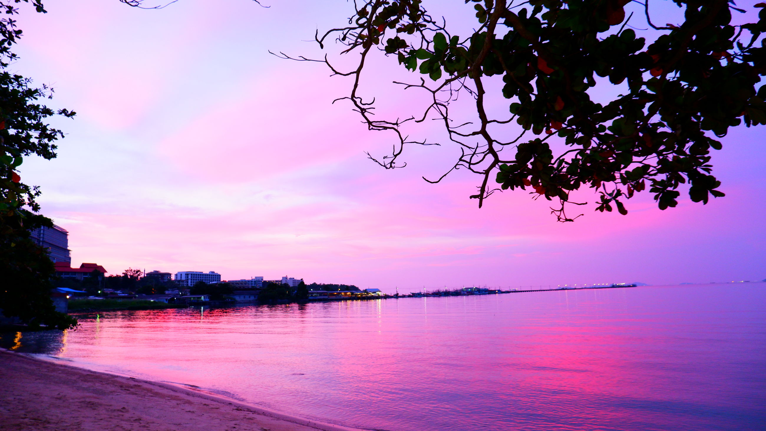 water, sky, tree, beauty in nature, nature, plant, scenics - nature, tranquility, sunset, cloud, sea, dusk, evening, reflection, pink, tranquil scene, no people, beach, outdoors, silhouette, travel destinations, land, landscape, idyllic, environment, travel, multi colored, architecture