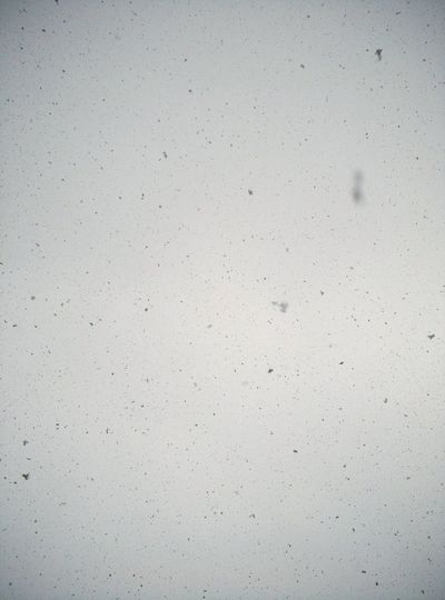 这是雪 告诉你