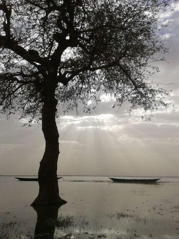 نهر النيل الخرطوم منطقه الكلاكلة القبه محطة 7