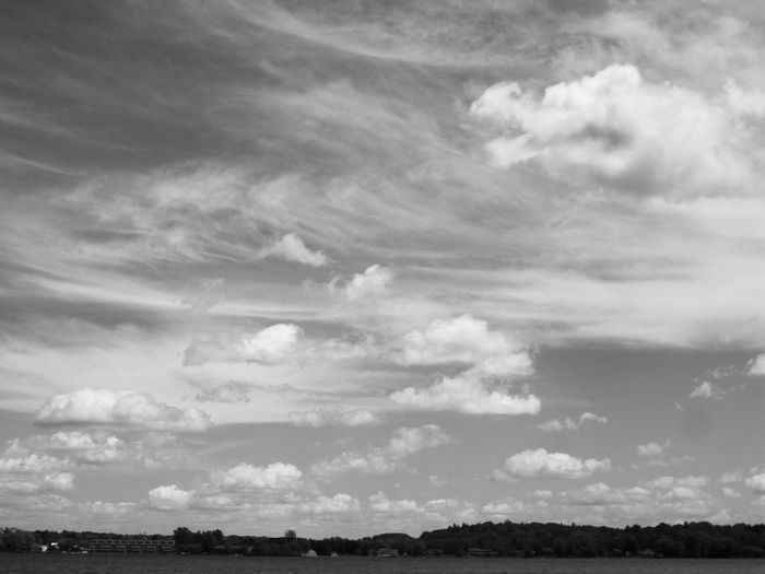 Cloud Formations Crocodile Coolpic Summer ☀ Tustin Black & White Pure Michigan Do You See What I See?
