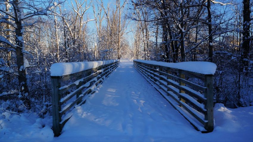 Leading Lines Bare Tree Beauty In Nature Branch Cold Temperature Day Footbridge Forest Nature No People Outdoors Railing Scenics Sky Snow Tranquil Scene Tranquility Tree Weather Winter Wood - Material