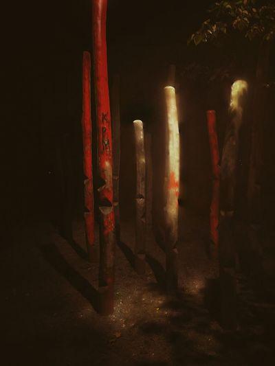 Totem Night