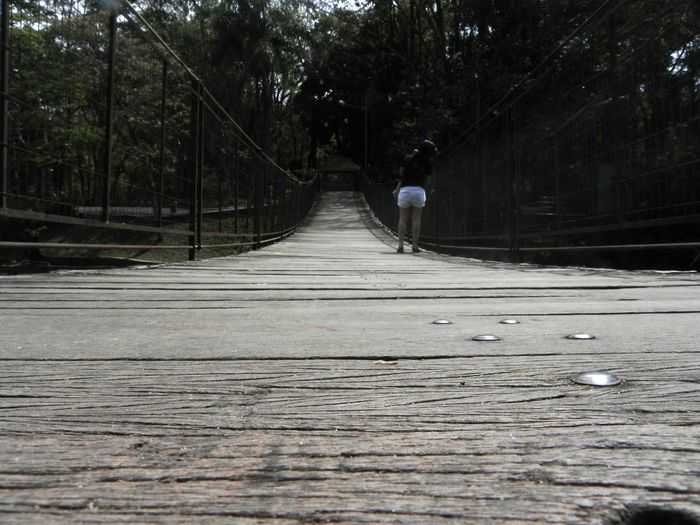 Bridge Walking Over A Bridge Woman Wood Zoo
