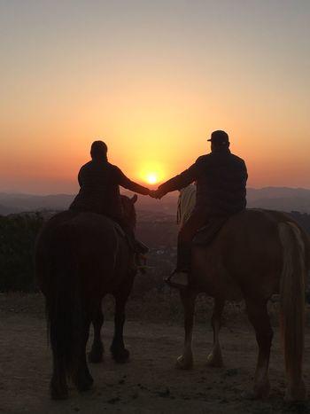 Sunset Horseback Riding Malibu Sunset Horseback Riding Beautiful Nature Romantic Birthday Gift