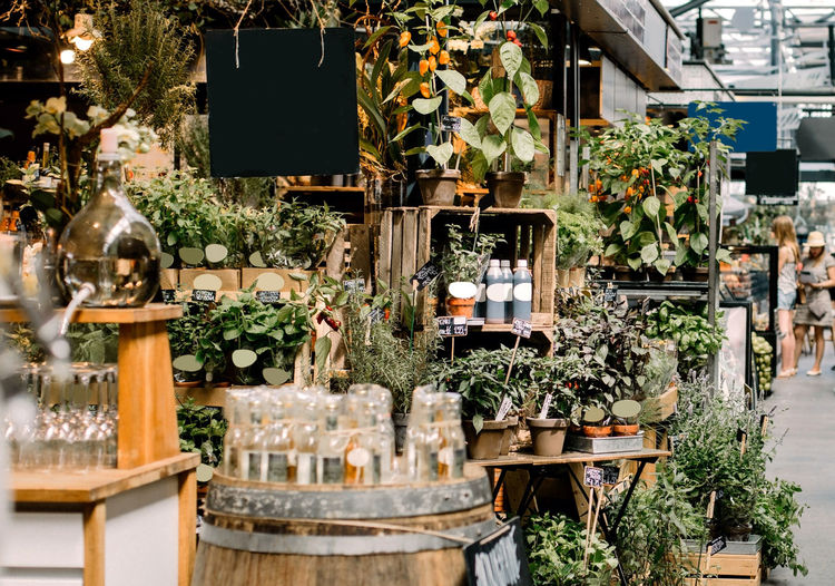 Retail display of fresh herbs and gifts at a market in copenhagen, denmark