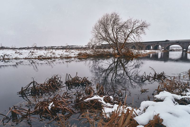 Snow Sunday Shades Of Winter Winter Wonderland Wintertime Nene Reflection Waterscape River Waterfront Water Reflections TreePorn Tree_collection  Lone Tree Water Winter Nature Bare Tree Cold Temperature Reflection Tree Beauty In Nature Bridge - Man Made Structure Outdoors Landscape Snow