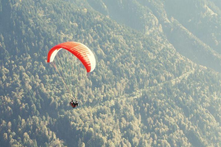 Paraglider flying over forest