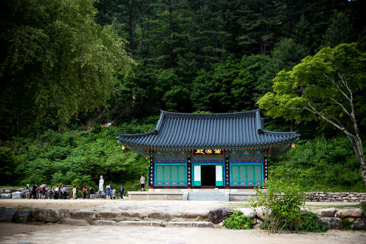 Temple in forest against trees