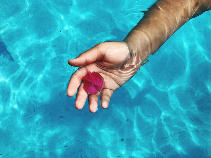 High angle view of mans hand underwater holding flower in swimming pool