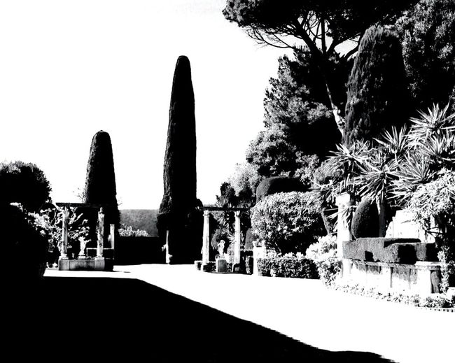monochrome entrance to Villa Anna Rotschild park. Luxurylifestyle  Luxury Blogger Villa Rotschild Cap Ferrat France🇫🇷 South France Outdoors Parks Luxurylifestyle  Architectural Column No People Live For The Story BYOPaper! The Architect - 2017 EyeEm Awards Blackandwhite Monochrome Photography The Street Photographer - 2017 EyeEm Awards The Great Outdoors - 2017 EyeEm Awards EyeEmNewHere The Photojournalist - 2017 EyeEm Awards Luxuryworldtraveler EyeEm Selects Connected By Travel архитектура Perspectives On Nature Be. Ready. Black And White Friday EyeEm Ready   AI Now