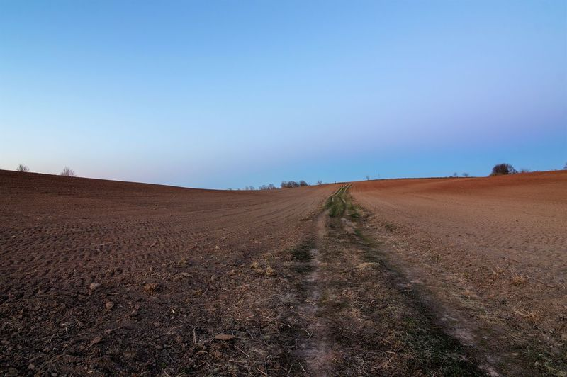 Sky Landscape Land Environment Tranquil Scene Tranquility Scenics - Nature Nature Field Clear Sky Copy Space Beauty In Nature Day No People Blue Dirt Direction Plough Rural Scene Road Outdoors Arid Climate Climate Farming Road Arable Land