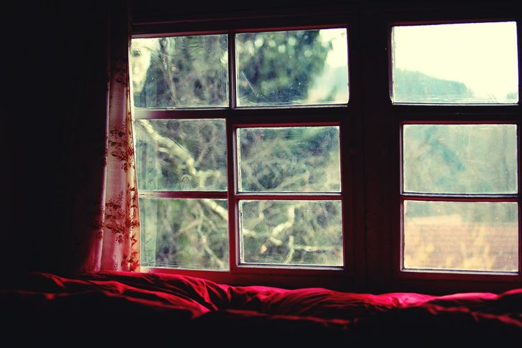 Pink bed by glass window at home