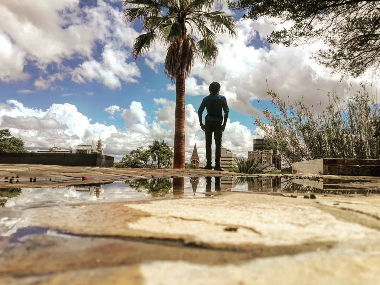 cloud - sky, one person, full length, sky, tree, men, standing, nature, plant, rear view, real people, palm tree, day, leisure activity, water, lifestyles, tropical climate, outdoors, adult