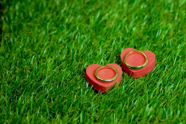 Close-Up Of Heart Shape With Rings On Grass