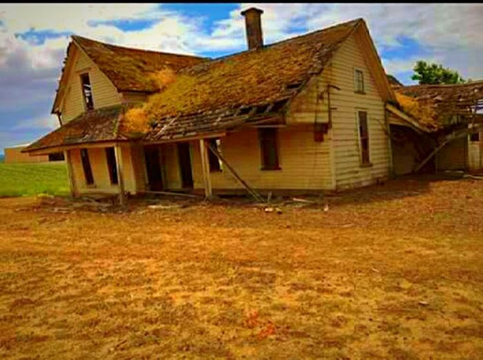 Building Exterior Built Structure Cloud - Sky Architecture Abandoned House Farmhouse Rural Scene Wood - Material Outdoors Landscape Agricultural Building Roof Getty Images Multi Colored Oregonexplored EyeEm Gallery Scenics Fragility The Great Outdoors - 2017 EyeEm Awards The Portraitist - 2017 EyeEm Awards Environment Sea EyeEm Best Shots Inspiring View Broken Beauty