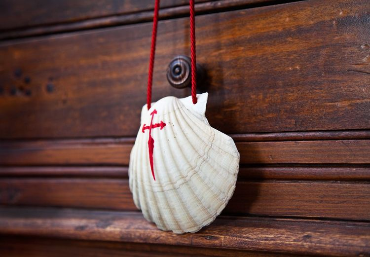 Shell with cross - symbol of pilgrim of Compostela Crucifix Object Galicia Symbol Pilgrimage Christianity Catholicism Religion Pilgrim Santiago De Compostela Compostela Way Of Saint James Shell SPAIN Wood - Material Hanging No People Close-up Indoors  Day Wall - Building Feature Focus On Foreground Clothing Still Life Wood White Color Fashion Brown Red Simplicity