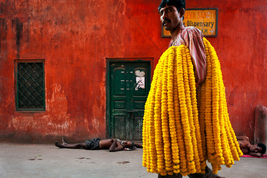 Building Exterior Calcutta Composition Flowers India Indian Kolkata Marigold Marji Lang Photography Market Men Men At Work  People Red Street Street Photography Yellow