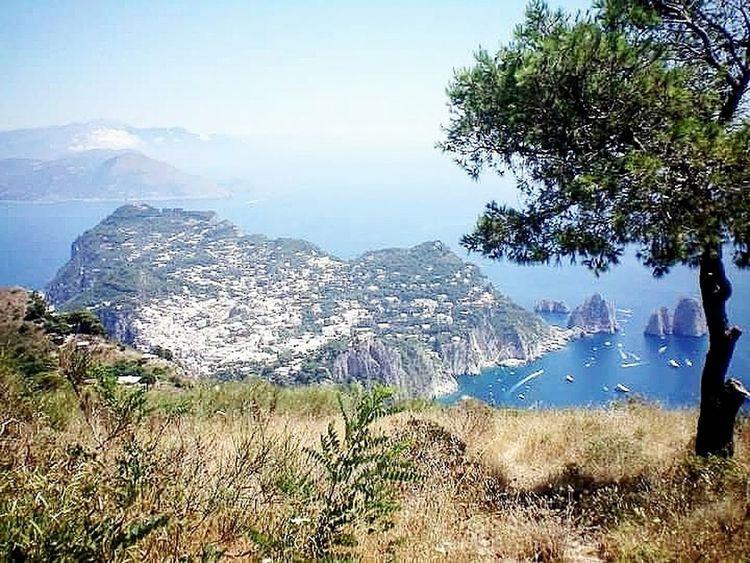 Spectacular views from Monte Solaro - the top of Capri. Isle Of Capri Amalfi Coast Italy 🇮🇹 Europe Travel Travel Photography EyeEmNewHere EyeEmNewHere
