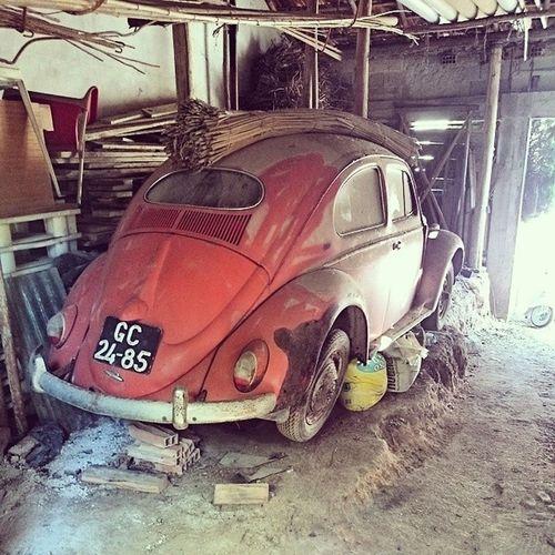 Carocha 1954 a caminho do restauro.