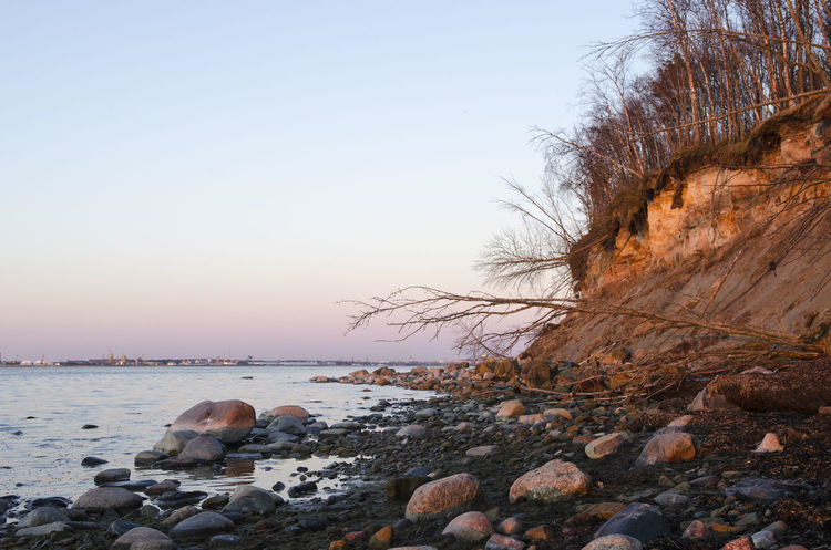 Kakumäe Baltic Sea Baltic Sea Beach Baltic Sea View Beach Beauty In Nature Clear Sky Horizon Over Water Nature Outdoors Rocks And Water Sea Tranquil Scene Tranquility Tree