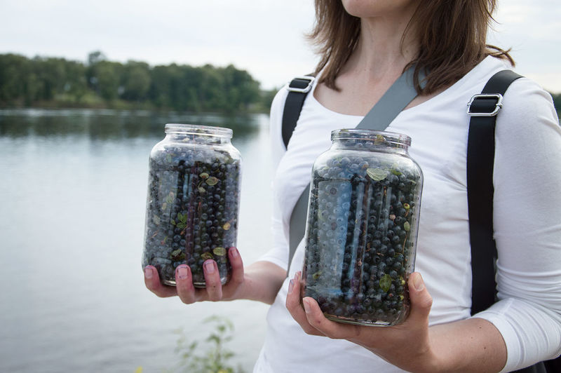 Midsection Of Woman Holding Blueberries In Jars At Lakeshore