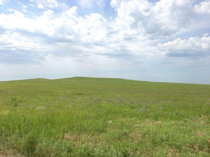 Tallgrass Prairie Kansas