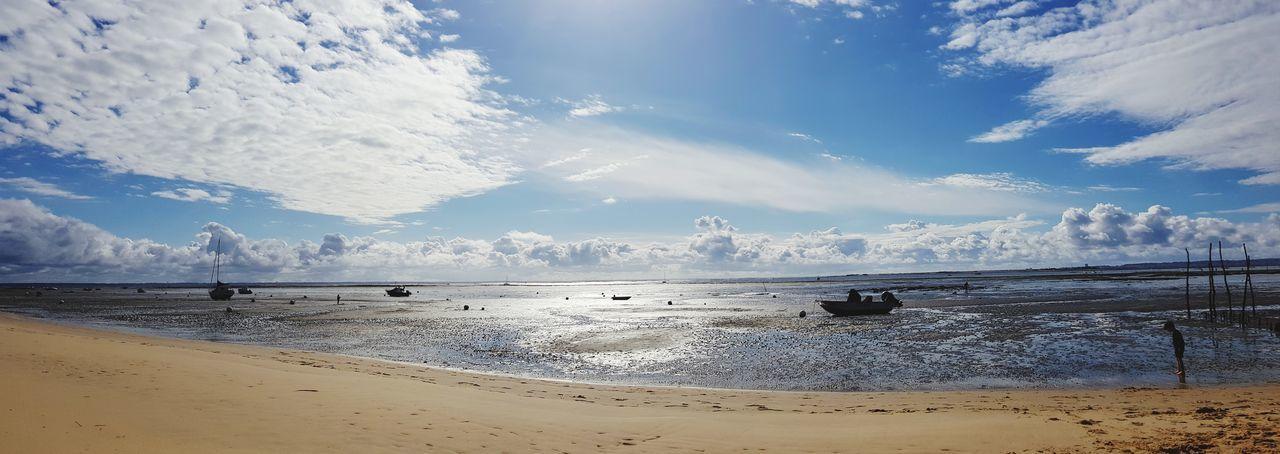 Water Sea Beach Blue Sand Bird Beauty Mountain Sky Horizon Over Water Panoramic Coast