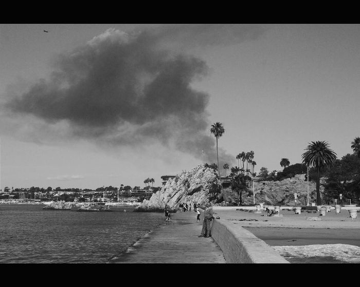 Smoke on the water Fire Corona Del Mar Beach Corona Del Mar Beach First Eyeem Photo Palm Trees Black And White Death Life The Week Of Eyeem Beachphotography Nature People EyeEm Best Shots Well Turned Out Welcomeweekly Welcome Weekly Showcase: February