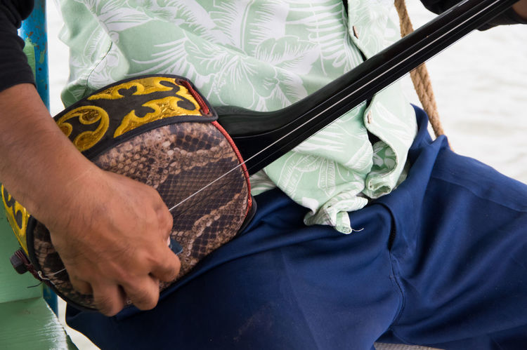 Casual Clothing Close-up Cow Cropped Day Focus On Foreground Hand Iriomote Leisure Activity Lifestyles Middle Age Midsection Music Instrument Music Performance Okinawa Part Of Personal Perspective Relaxation Traditional Instruments Unrecognizable Person