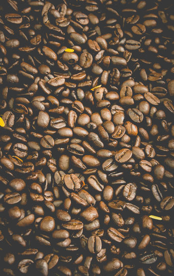 Abundance Backgrounds Brown Close-up Coffee Bean Day Food Food And Drink Freshness Full Frame Indoors  Large Group Of Objects No People