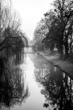Atmosphere Atmospheric Mood Brume Brumes Hivernales Canal Eau France Photos Hiver Hiver 2016-2017 Hivernal  Melancholic Landscapes Roanne Triste Water Black And White Friday