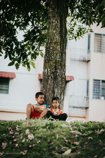 Surface level of boys sitting by tree trunk on field