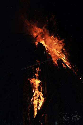 Bonfire Burning Close-up Flame Heat - Temperature Motion Nature Night No People Outdoors Tree