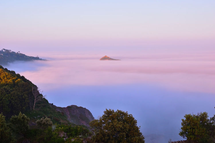 Devon UK Torbay Torquay Beauty In Nature Cloud - Sky Fog Idyllic Meadfoot Beach Mountain Nature No People Pink Color Sea Sky Sunset Tree Water