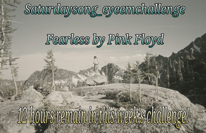 Thank you for all of the wonderful contributions so far to this week's Saturdaysong_eyeemchallenge ! There are 12 hours remaining. *See previous posts for the rules.* The song is Fearless by Pink Floyd. Pink Floyd - Fearless http://youtu.be/9M23zjNrG9M The challenge ends at midnight PST. Have a good time and please join us! Pink Floyd Fearless Challenge Listening To Music Rock
