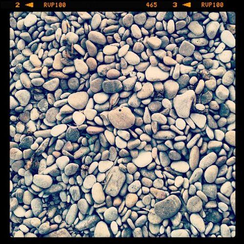 Rocky Beach Korbus