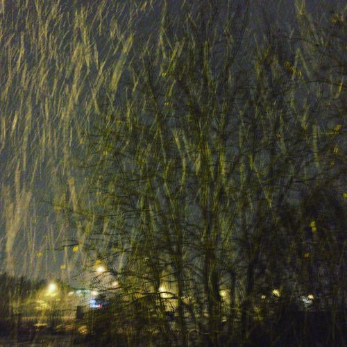 Cityscape Night Rainy Snow Tree No People Plant Night Illuminated Full Frame Growth Nature Tranquility Outdoors Beauty In Nature Backgrounds Branch