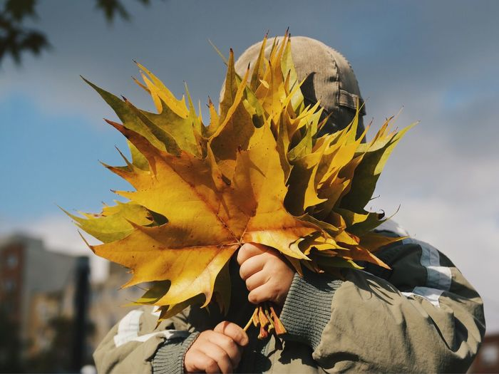 Child Covering Face With Maple Leaves